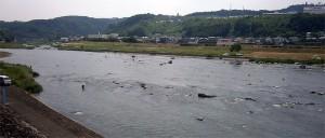 6月4日の平常時の三隈川
