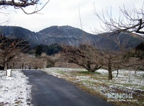 大久保台梅園と烏宿山