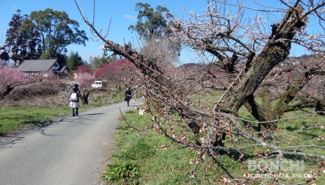 園内の散策も心地よい日でした